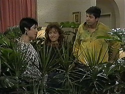 Kerry Bishop, Christina Alessi, Joe Mangel in Neighbours Episode 1215