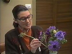 Dorothy Burke in Neighbours Episode 1238