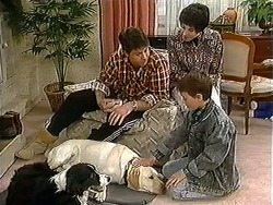 Rosie, Bouncer, Joe Mangel, Kerry Bishop, Toby Mangel in Neighbours Episode 1241