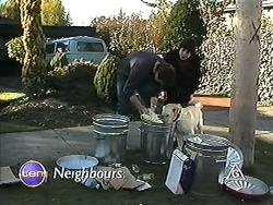 Joe Mangel, Kerry Bishop, Bouncer in Neighbours Episode 1247