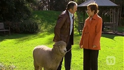 Chop, Karl Kennedy, Susan Kennedy in Neighbours Episode 6736
