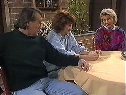 Doug Willis, Pam Willis, Helen Daniels in Neighbours Episode 1273