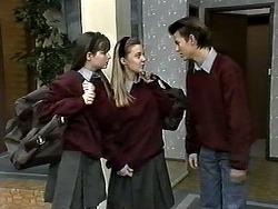 Cody Willis, Melissa Jarrett, Todd Landers in Neighbours Episode 1277