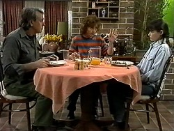 Doug Willis, Pam Willis, Cody Willis in Neighbours Episode 1301