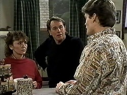Pam Willis, Doug Willis, Adam Willis in Neighbours Episode 1308