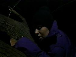Melissa Jarrett in Neighbours Episode 1313