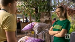 Callum Rebecchi, Josie Lamb in Neighbours Episode 6799