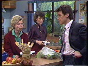Helen Daniels, Ruth Wilson, Paul Robinson in Neighbours Episode 0347