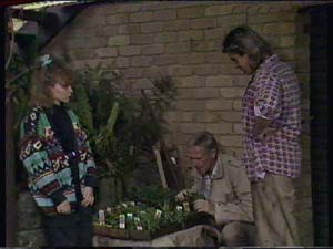 Charlene Mitchell, Ray Murphy, Shane Ramsay in Neighbours Episode 0358