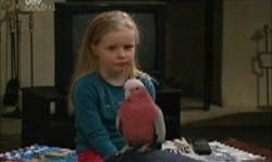 Dahl, Emily Hancock in Neighbours Episode 3919