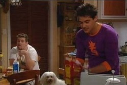 Toadie Rebecchi, Matt Hancock in Neighbours Episode 3945