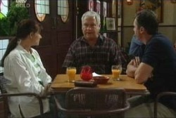 Susan Kennedy, Lou Carpenter, Karl Kennedy in Neighbours Episode 3957