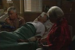 Lou Carpenter, Harold Bishop, Rosie Hoyland in Neighbours Episode 3974