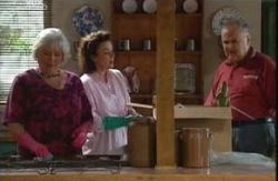 Rosie Hoyland, Lyn Scully, Harold Bishop in Neighbours Episode 3988