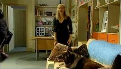 Janelle Timmins, Harvey in Neighbours Episode 5034
