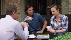 Paul Robinson, Leo Tanaka, Amy Williams in Neighbours Episode 7773