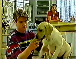 Lance Wilkinson, Anne Wilkinson, Bonnie in Neighbours Episode 2772