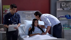 David Tanaka, Mishti Sharma, Leo Tanaka in Neighbours Episode 7812
