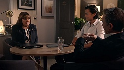 Terese Willis, Leo Tanaka, Paul Robinson in Neighbours Episode 7878