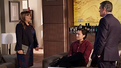 Terese Willis, Leo Tanaka, Paul Robinson in Neighbours Episode 7912