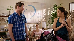 Shane Rebecchi, Amy Williams, Elly Conway in Neighbours Episode 7942