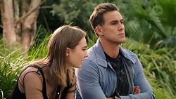 Piper Willis, Aaron Brennan in Neighbours Episode 7952