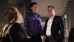 Terese Willis, Leo Tanaka, Paul Robinson in Neighbours Episode 7953