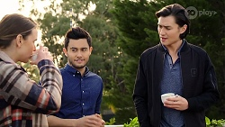 Amy Williams, David Tanaka, Leo Tanaka in Neighbours Episode 7966