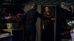 Toadie Rebecchi, Willow Bliss in Neighbours Episode 7995