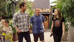 Shane Rebecchi, Toadie Rebecchi, Willow Bliss in Neighbours Episode 7998