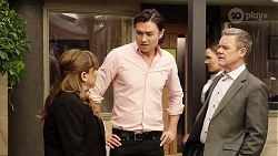 Terese Willis, Leo Tanaka, Paul Robinson in Neighbours Episode 8001