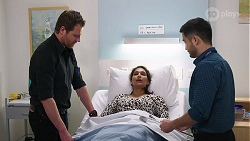 Shane Rebecchi, Dipi Rebecchi, David Tanaka in Neighbours Episode 8007