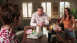 Susan Kennedy, Karl Kennedy, Bea Nilsson in Neighbours Episode 8060