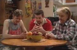 Angie Rebecchi, Kevin Rebecchi, Toadie Rebecchi in Neighbours Episode 4120