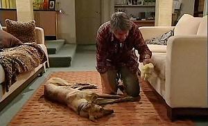 Bouncer 5, Joe Mangel in Neighbours Episode 4802