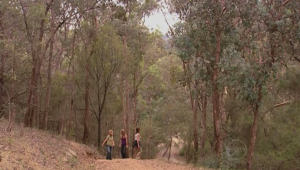 Gail Robinson, Izzy Hoyland, Elle Robinson in Neighbours Episode 5001