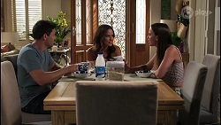 Ned Willis, Elly Brennan, Bea Nilsson in Neighbours Episode 8119
