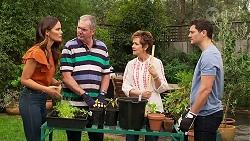 Elly Brennan, Karl Kennedy, Susan Kennedy, Finn Kelly in Neighbours Episode 8127