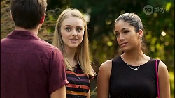 Ned Willis, Willow Somers, Yashvi Rebecchi in Neighbours Episode 8135