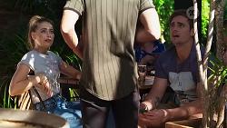 Chloe Brennan, Ned Willis, Kyle Canning in Neighbours Episode 8146