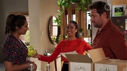 Dipi Rebecchi, Yashvi Rebecchi, Shane Rebecchi in Neighbours Episode 8159