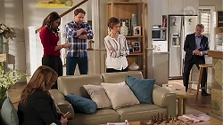 Terese Willis, Dipi Rebecchi, Shane Rebecchi, Susan Kennedy, Paul Robinson in Neighbours Episode 8224