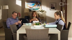 Paul Robinson, Terese Willis, Harlow Robinson in Neighbours Episode 8227