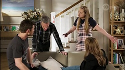 Ned Willis, Paul Robinson, Harlow Robinson, Terese Willis in Neighbours Episode 8260