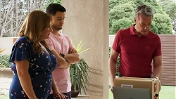 Terese Willis, David Tanaka, Paul Robinson in Neighbours Episode 8280