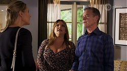 Lisa Rowsthorn, Terese Willis, Paul Robinson in Neighbours Episode 8290