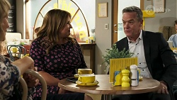 Jane Harris, Terese Willis, Paul Robinson in Neighbours Episode 8296