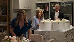 Terese Willis, Jane Harris, Paul Robinson in Neighbours Episode 8321