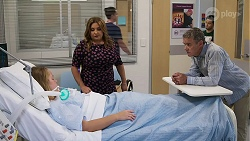 Harlow Robinson, Terese Willis, Paul Robinson, David Tanaka in Neighbours Episode 8328