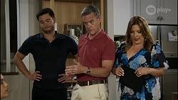 David Tanaka, Paul Robinson, Terese Willis in Neighbours Episode 8356